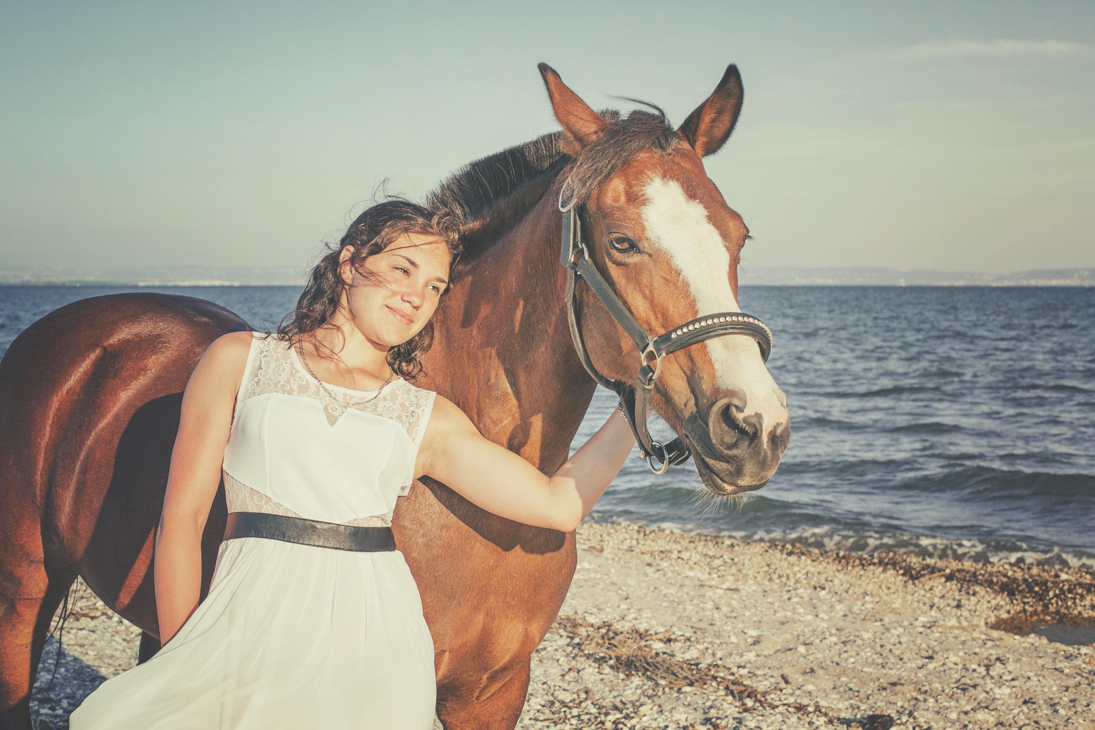 Photographe animaux de compagnie, cheval et sa cavalière