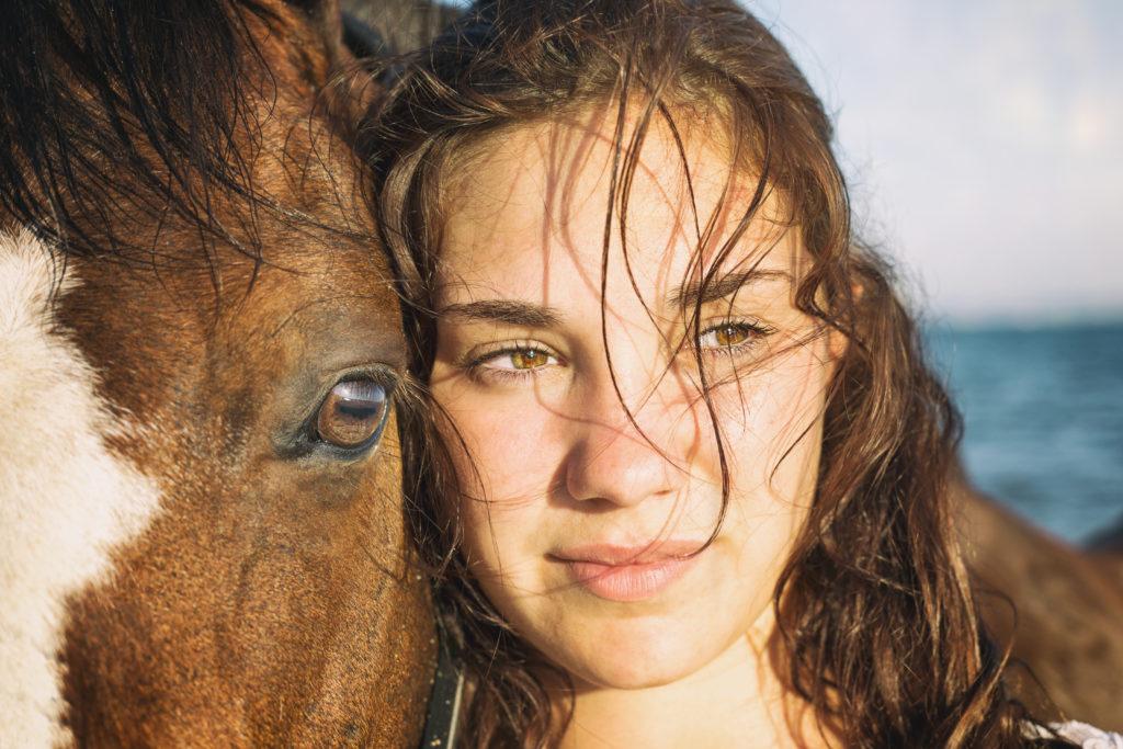 Photographe animaux compagnie, portrait de cheval et sa cavalière