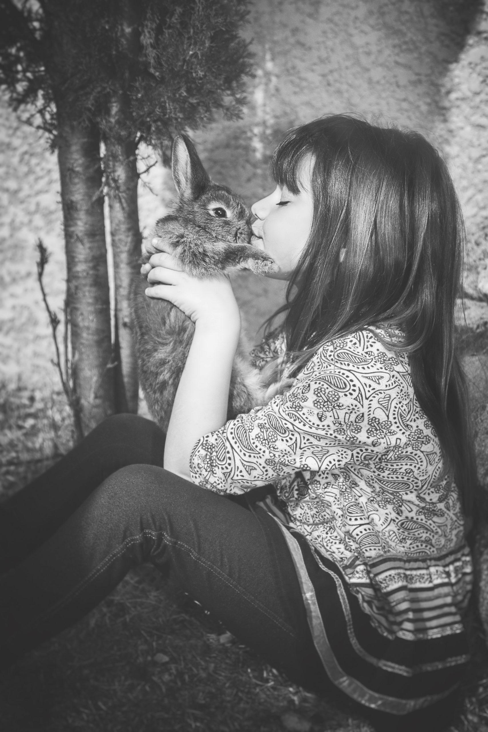 Photographe animaux de compagnie, lapin