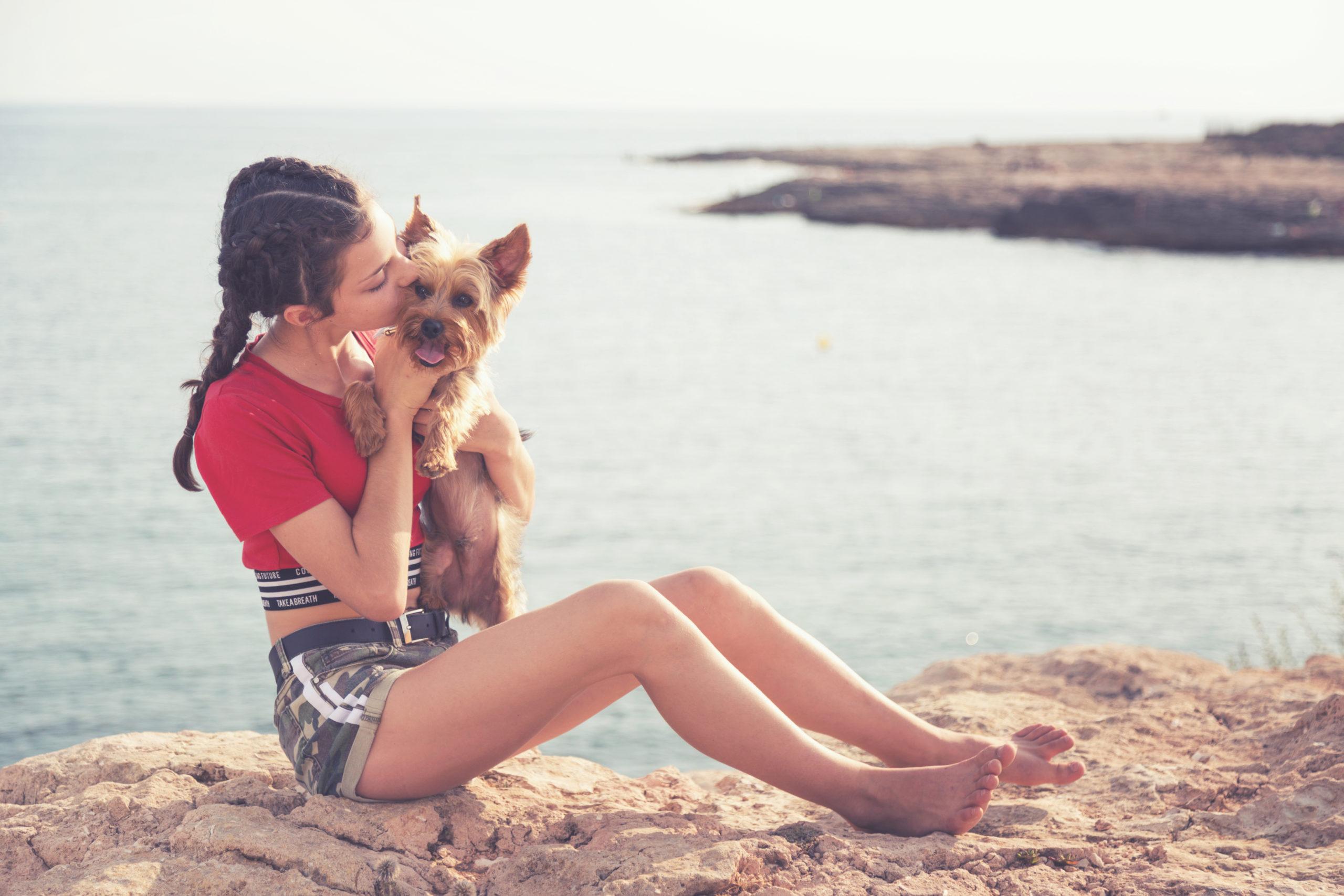 Photographe animaux de compagnie, chien et son maître